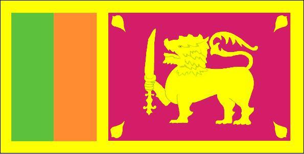 斯里兰卡商务签证