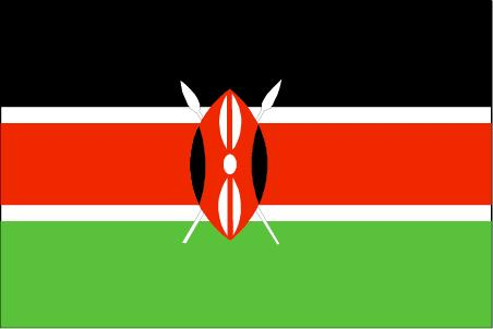 肯尼亚个人旅游签证