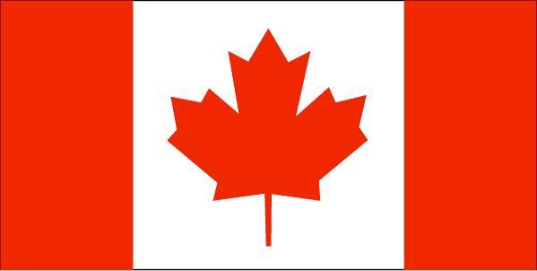 加拿大年夜探亲访友签证