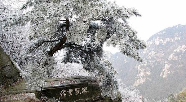 庐山冬日奇景图