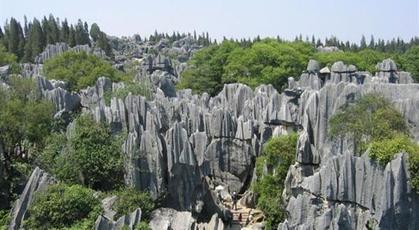 石林风景区黑松岩图