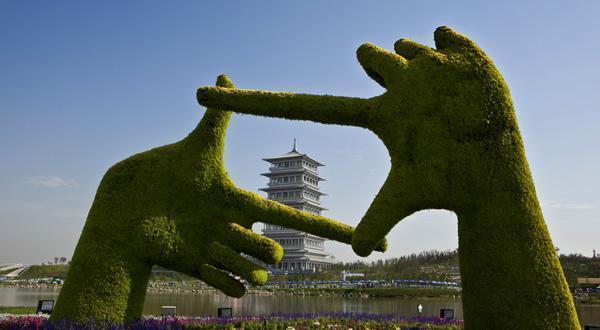 世界园艺博览园风景