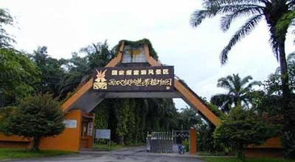 西双版纳热带植物园全景
