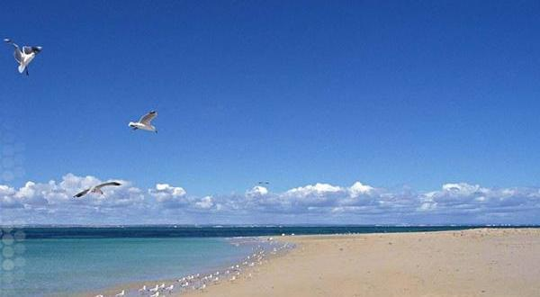 日照市海滨国家森林公园海滩