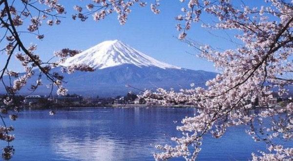 极致本州日本半自由行8天