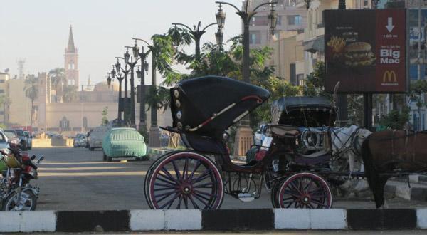 埃及度假8天QR
