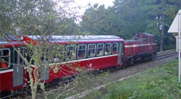 阿里山景区内火车