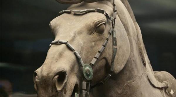 秦始皇兵马俑博物馆-马