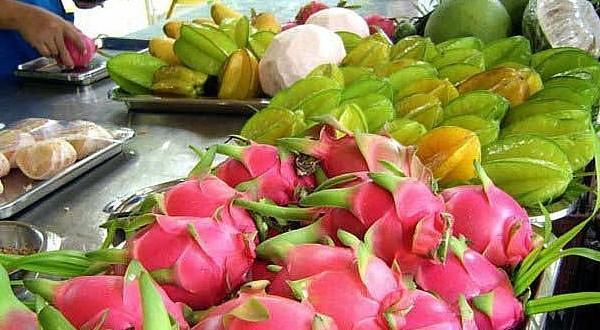 绿洲水果园水果们