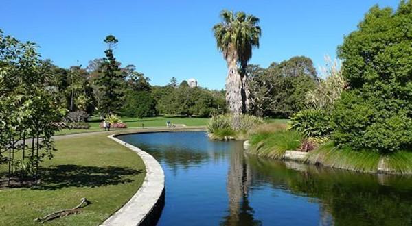 皇家植物园风景