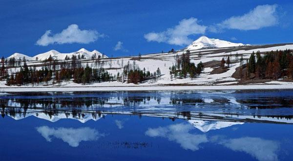 黄石国家公园雪景图