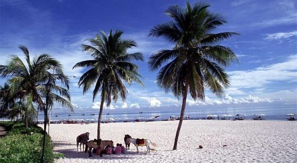 【Thai艾沙美】 曼谷 芭提雅 沙美岛七天五晚