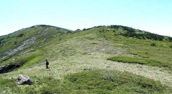 牛背梁国家森林公园风景