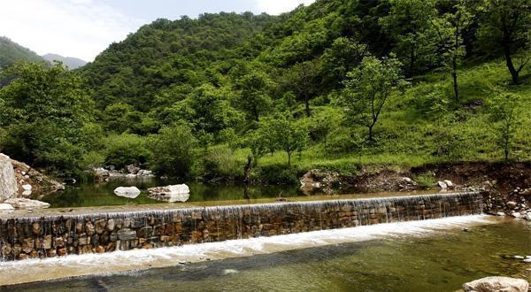 牛背梁国家森林公园景色