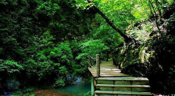 金丝峡景色