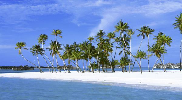 巴厘岛一景