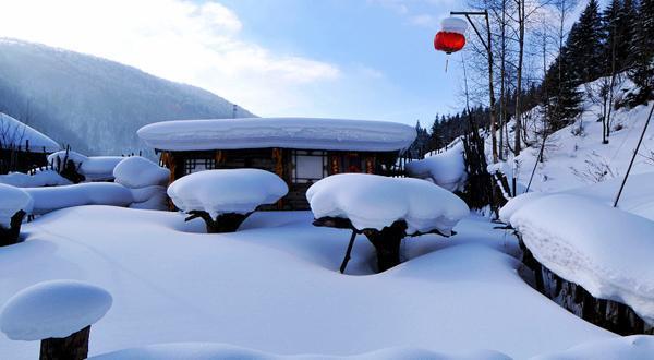【雪乐汇】---哈亚雪品质、冰雪大世界6日游