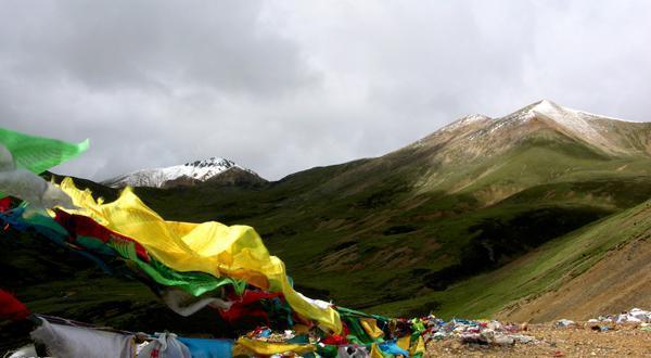 米拉山口景观