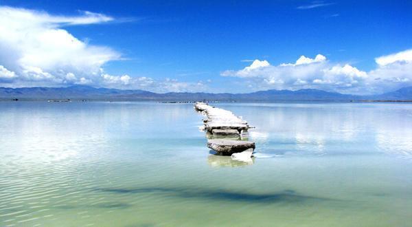 动车祈福塔尔寺环游青海湖观天空之镜双动四日游 线
