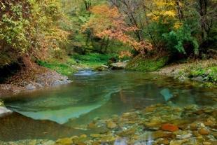 汉中黎平国家森林公园二日游