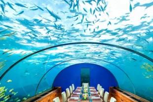 【马尔代夫港丽岛5晚7日自助游】西安直飞马尔代夫,希尔顿集团,水上飞机,水下餐厅