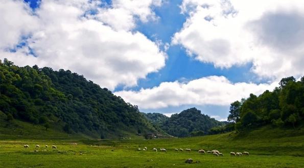 关山牧场二日游