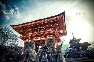 邂逅東京超值本州7日