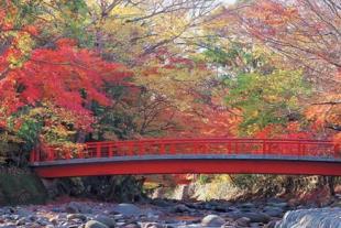 日本九州温泉5日游