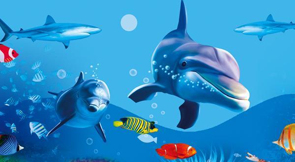 西安直飞【海陆空三次方】澳新+海豚岛12日跟团游★★★★★