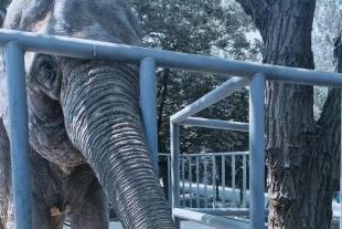 秦岭野生动物园一日游