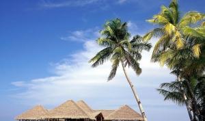 小资海情调    蜈支洲VIP上岛,含千古情演出,五晚连住一线海边泳池酒店。