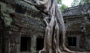 吴哥一地-柬埔寨三星6天4晚
