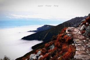 太白山国家森林公园、尚境温泉二日游