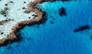 众悦甄选 一价全含 探秘海豚岛澳新11日