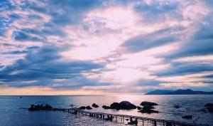 sy-纵情海岛