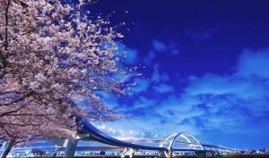 9C【初见日本】本州全景 7天
