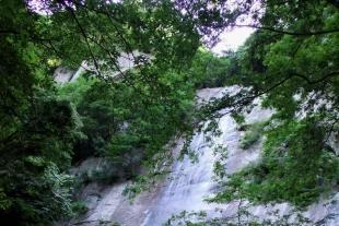 红河谷森林公园一日游