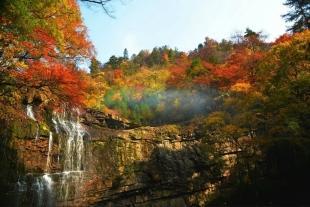 光雾山赏红叶、网红芦苇荡、兴汉胜境二日游